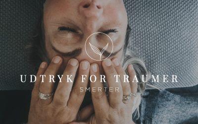 Udtryk for Traumer – Smerter