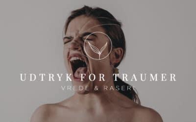 Udtryk for Traumer – Vrede & raseri
